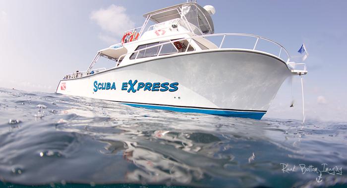 Newton 46' Dive Special - Myrtle Beach Scuba Diving Boat
